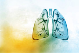 learn-it-live-lung-image