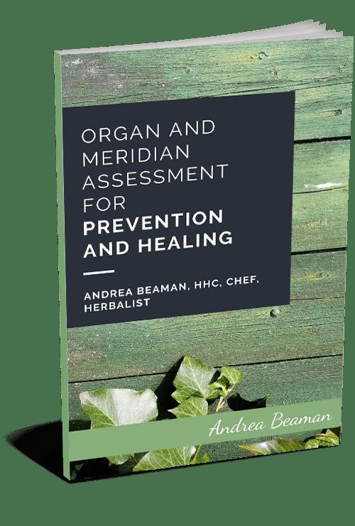 organ and meridian