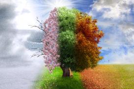 Seasons Change and So Should We